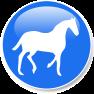 Lees meer over paarden